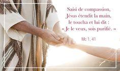 Saisi de compassion, Jésus étendit la main, le toucha et lui dit : « Je le veux, sois purifié. » - Hozana