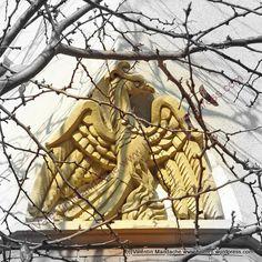 Phoenix bird detail, Bucharest 1930s