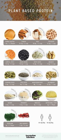 Vegetable protein sources for a conscious and delicious diet! Vegetable protein sources for a conscious and delicious diet! Vegetable protein sources for a conscious and delicious diet! Vegetable protein sources for a conscious and delicious diet! Plant Based Nutrition, Vegan Nutrition, Health And Nutrition, Proper Nutrition, Nutrition Guide, Champion Nutrition, Nutrition Chart, Herbalife Nutrition, Holistic Nutrition