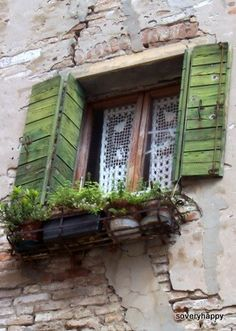 Now I want shutters :-) Green shutters, lace curtains & herbs Green Shutters, Window Shutters, Window Boxes, Irish Cottage, Lace Curtains, Crochet Curtains, Window View, Through The Window, Old Doors