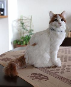 Incredibly realistic felted cat