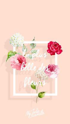 Belle Flower Peach iPhone Wallpaper Lock Screen @PanPins