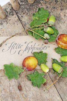 VIBEKE DESIGN: Hello September!