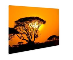 Metal Panel Print, African Sunset In Savannah Little Prince Fox, Heber City, African Sunset, African Attire For Men, Pokemon Trading Card, Lots Of Cats, Metal Panels, Old Video, Floating Frame