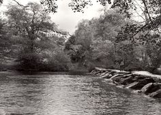 A postman walks along the Tarr Steps, a clapper bridge across the river Barle, Somerset. Tarr Farm can be glimpsed through the trees in the background. Image taken: Royal Mail, Somerset, Devon, Walks, United Kingdom, Bridge, Trees, River, Photos