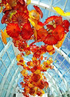 Американский художник Дейл Чихули (Dale Chihuly), известный крупными инсталляциями из цветного стекла, на этот раз удивил целым садом. Его обновленная усадьба в Сиэтле, площадью в полтора акра (около двух км²), включает выставочную галерею, сад и стеклянный дом.