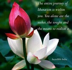 Lotus flower poems quotes the above art print is available for find this pin and more on zitate by marina zimmermann mightylinksfo