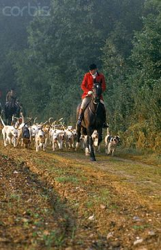 Riding Out With the Hounds