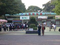 Ueno Zoo Ueno Zoo, Yokohama, Places Ive Been, Dolores Park, Tokyo, Asia, Street View, Japan, Memories