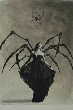 A Black Widow I presume...