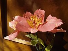 Paper Flower - Alstroemeria / Peruvian Lily / Lily of the Incas (Flower # 30) - YouTube