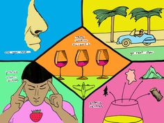 Better Your Life with An Improved Sense of Taste: Given that taste comparisons are one of the best ways to learn how to blind taste here are a few tried-and-true wine flights you might like to do.
