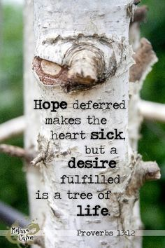 """Verse. Bible. Truth. Scripture.  Proverbs 13:12.  """"Hope deferred makes the heart sick, but a desire fulfilled is a tree of life."""""""