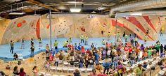 The BLOC climbing   fitness