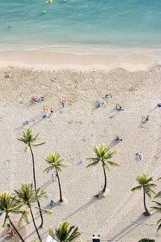 Une sublime plage vue d'en haut avec ses palmiers sous lesquels on aimerait volontiers faire une sieste ! #plage #beach
