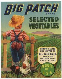 BIG PATCH Vintage Vegetable Crate Label