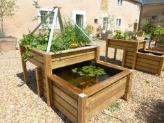 bassin potager selon le principe de l'aquaponie