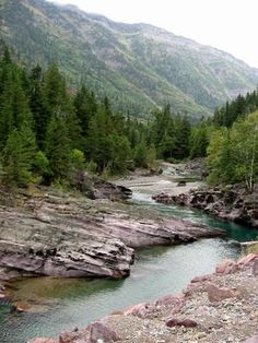 Glacier National Park offers seasonal and year-round sites.