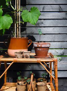 DIY-puutarhaterapia, sormet multaan! ;) | arkitunnelmia