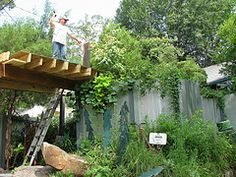 Introductory info on different types of living roofs and their components.