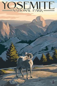 Travel Art Big Horn Sheep - Yosemite National Park, California: Retro Travel Poster Wall Art by Lantern Press from Great BIG Canvas. California National Parks, Us National Parks, Yosemite National Park, Visit California, Voyage Usa, Big Horn Sheep, Retro, Sheep Art, National Park Posters