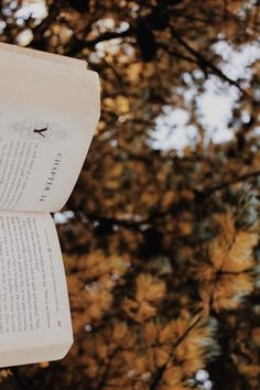 Autumn is colorful leaves and a book 🖤