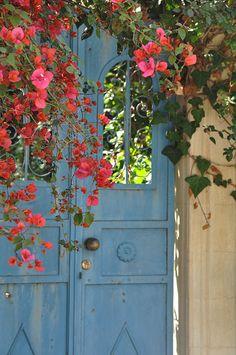Palestine door...