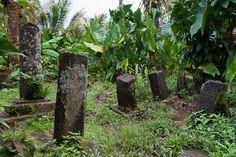 Kosrae, Micronesia (2/2): mff