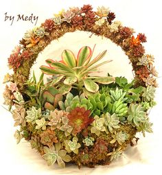 SPHAGNUM MOSS BASKET WITH HANDLE