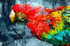 Nieuw in mijn Werk aan de Muur shop: Abstracte papegaai