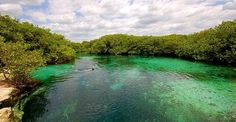 """Tankah Bay Cenote """"casa cenote"""". Been there! Right behind the villa we rented."""