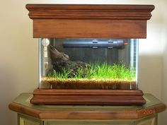 Beautiful DIY nano fish aquarium/tank. 2.5 gal is my guess