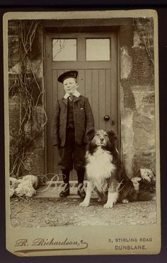 Boy with Collie Dog, Antique Cabinet Photo, Excellent View of Dog Rough Collie, Collie Dog, Dog Photos, Dog Pictures, Collie Breeds, Me And My Dog, Easiest Dogs To Train, Dog Rules, Vintage Dog