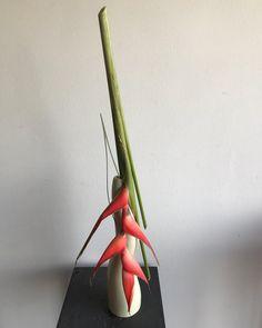 #heliconiaflower #speergrass #ikebanainternational #sogetsuikebana #sogetsu #loveikebanadesign#sogetsubranch#rita