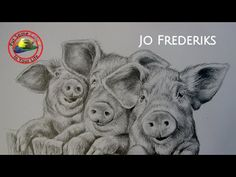 Fine art tips on How to Draw Animals with Jo Frederiks on Colour In Your Life - YouTube