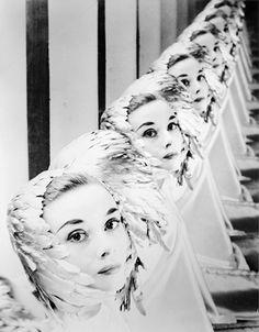 Audrey Hepburn by Erwin Blumenfeld, 1952