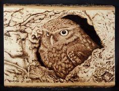 Owl - woodburning by ~brandojones on deviantART