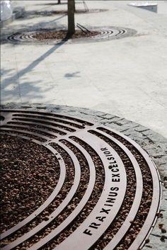 Tree grates with specie's name by Tripla, 2014 Landscape Elements, Urban Landscape, Landscape Architecture, Landscape Design, Architecture Design, Garden Design, Architecture Diagrams, Architecture Portfolio, Urban Furniture