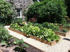 Vegetable Garden - traditional - landscape - philadelphia - Burke Brothers Landscape Design/Build