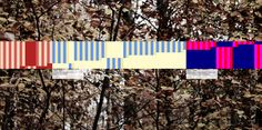 countune.com | 2014,12,10 | Background: Gerd Jansen