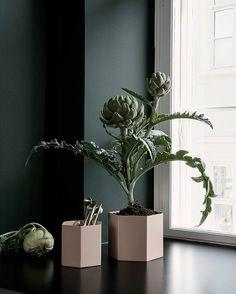 Hexagon Pot i ny farge - Rose 💖 De finner du hos oss: interior24.no 😉  På lager til omgående levering 🤗