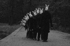 why are animal masks so creepy? Animal Masks, Animal Heads, Matt Hardy, Bunny Mask, Creepy Images, Arte Obscura, Bizarre, Dark Art, Alice In Wonderland