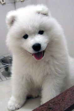 White and fluffy.