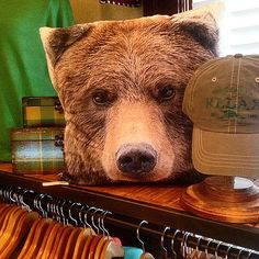 Bear face pillow. This is necessary for a Baylor dorm because #SicEm.