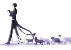 Welcome to the cat parade!