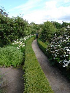 Hedge-defined path. Inverewe Garden, Lock Ewe, Scotland English House, Hedges, Garden Inspiration, Paths, Scotland, Sidewalk, Gardens, Photo And Video, Landscape
