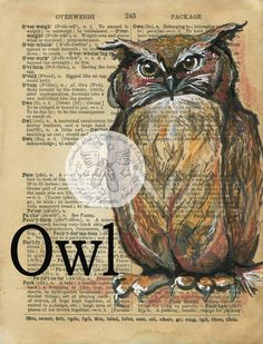 Owl Mixed Media Drawing on 1890's, antique dictionary - flying shoes art studio
