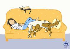Ilustración sobe ela siesta perruna, por El galgo azul