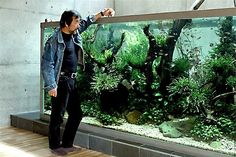 Takashi Amano's personal tank