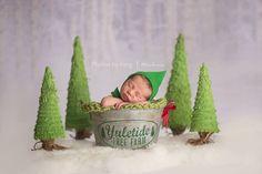 Christmas elf Newborn and trees
